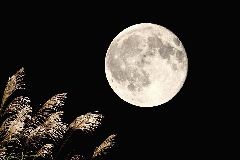 mėnulio prekybos sistema)