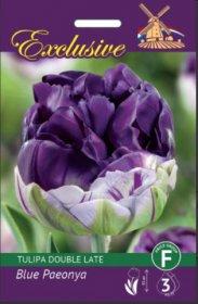 Tulpės EXCLUSIVE BLUE PAEONYA 11/12 5 svog., 3415