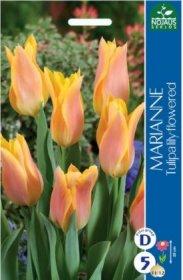 Tulpės MARIANNE 5 vnt.