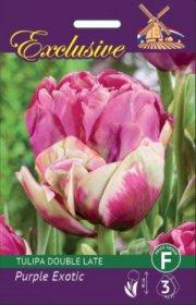 Tulpės EXCLUSIVE PURPLE EXOTIC 12/+ 3 svog., 3422