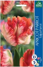 Tulpės APRICOT PARROT 5 vnt.