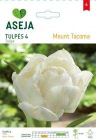 Tulpių svogūnėliai ASEJA Mount Tacoma, 4 vnt., 53931 (4)