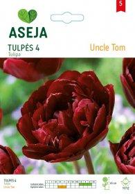 Tulpių svogūnėliai ASEJA Uncle Tom, 4 vnt., 53932 (5)