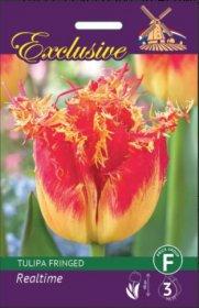Tulpės EXCLUSIVE REALTIME 11/+ 5 svog., 3477