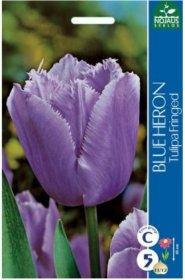 Tulpės BLUE HERON 5 vnt.
