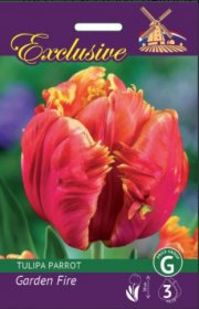 Tulpės EXCLUSIVE GARDEN FIRE 12/+ 5 svog., 3583