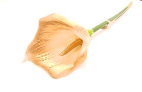 Dirbtinė gėlė kalija NOVELLY HOME GFN-078B, baltos sp., aukštis - 66 cm.