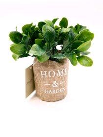 Dirbtinis augalas NOVELLY HOME G8-3A