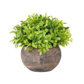 Dirbtinis augalas vazonėlyje NOVELLY HOME, G9-2