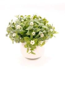 Dirbtinis augalas NOVELLY HOME G16