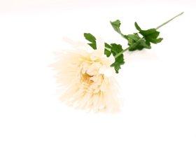 "Dirbtinė gėlė chrizantema ""Novelly Home"", batos sp. 70cm,  GF13409"