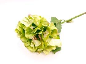 """Dirbtinė gėlė hortenzija """"Novelly Home"""", žalios sp. 64 cm,  DY13-6A"""