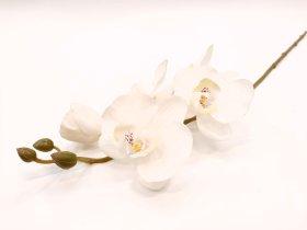 "Dirbtinė gėlė orchidėja ""Novelly Home"", baltos sp. 69 cm,  DY4-5A"