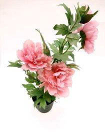 """Dirbtinis augalas vazonėlyje  """"Novelly Home"""",  46 cm,  DY1-2061"""