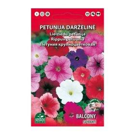 Sėklos gėlių, petunija, balkoninė Standart Mišinys, svyranti