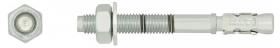 Inkarinis varžtas su žiedu RAWLPLUG R-XPT, 10 x 140 mm