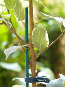 Bambukinės lazdelės SPLIT BAMBOO