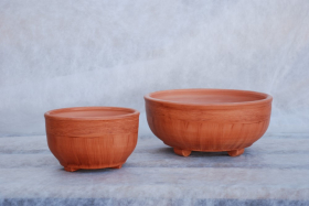 Keramikinis vazonas kaktusams