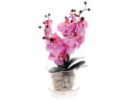 Stiklinis vazonas orchidėjai, 15 x 14 cm.