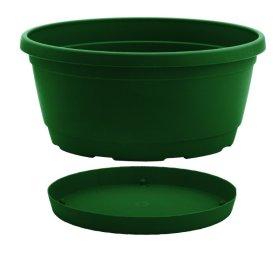 Dubuo su lėkštele Nicoli Rumba 20cm, žalias