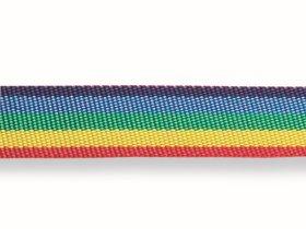 Austinis diržas 25mm, polipropileninė pinta juosta, vaivorykštės spalvos