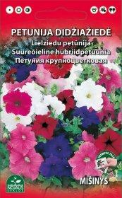 Sėklos gėlių, petunija, darželinė (02-07mėn)