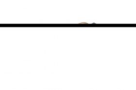 Nerūdijančio plieno lygi trintuvė su medine rankena PAINTER PAC0722 130 x 480 mm.