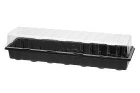 Daiginimo šiltnamis, 55x16 cm