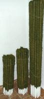 Kokosinė atrama gėlėms   vazonėlio skersmuo 25 mm, spalva žalia, ilgis 60 cm