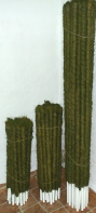 Kokosinė atrama gėlėms   vazonėlio skersmuo 25 mm, spalva žalia, ilgis 100 cm