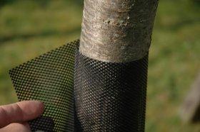 Apsauga medeliams FLEXGUARD  aukštis 110 cm, skersmuo 6 cm, juodos sp, 8 vnt pakuotėje