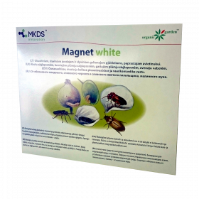 MAGNET white gaudyklė MKDS MAGNET white