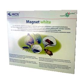 MAGNET white gaudyklė MAGNET white