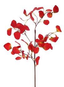Dirbtinis augalas eukaliptas NOVELLY HOME DY1-2684R, rudos sp., aukštis - 70 cm.