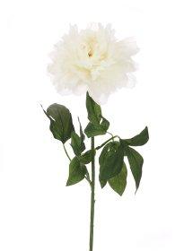 Dirbtinė gėlė bijūnas NOVELLY HOME DY1-2280, baltos sp., aukštis - 72 cm.