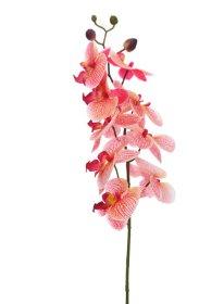 Dirbtinė gėlė orchidėja NOVELLY HOME FS-3343/BO/R, rožinės sp., aukštis - 89 cm.