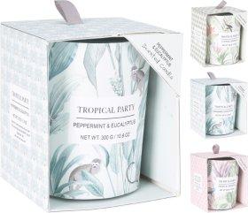 Žvakė dėžutėje, 8 x 10 cm., 3 skirtingi dizainai ir kvapai (citruso sodas, tropinė šiluma, pipirmėtė ir eukaliptas)