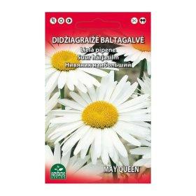 Sėklos gėlių, baltagalvė didžiagraižė 0,3 g (02-07mėn)