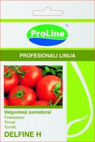 Sėklos daržovių, pomidorai PROLINE DELFINE H