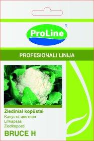 Sėklos daržovių, žiediniai kopūstai PROLINE BRUCE H