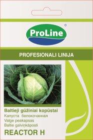 Sėklos daržovių, baltagūžiai kopūstai PROLINE Reactor F1
