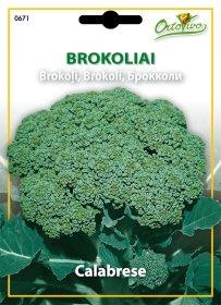 Sėklos, brokoliai HORTUS CALABRESE