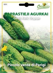 Sėklos, paprastieji agurkai HORTUS PICCOLO VERDE DI PARIGI