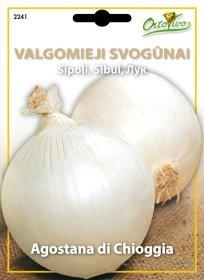 Sėklos, valgomieji svogūnai HORTUS Agostana di chioggia
