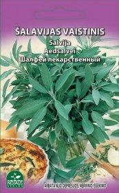 Sėklos gėlių, šalavijas, vaistinis   (02-07mėn).