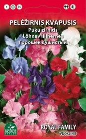 Sėklos gėlių, pelėžirnis, kvapusis   (02-07mėn).