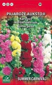 Sėklos gėlių, piliarožė, mišinys Standart Summer Carnival mix