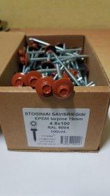 Šiferiniai sraigtai 4,8 x 100 mm Šiferiniai 100 vnt., ZN