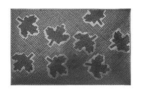 Kilimėlis MIX-MAT, 40 x 60 cm, 100% guma, pėdutės, 846-000
