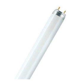 Liuminescencinė lempa OSRAM  L4-L36840 36 W, T8, 840, 4000 K, FLH1,